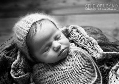 Nyfødtfotografering i studio Studiobuck Fotograf Ane Cathrine Buck Stavern nyfødt jente