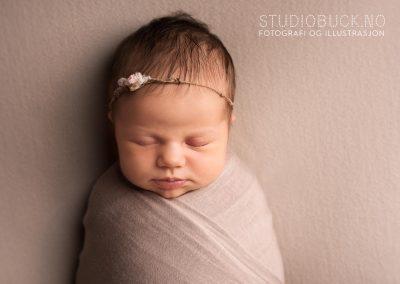 Nyfødtfotograf Ane Cathrine Buck Studiobuck Stavern